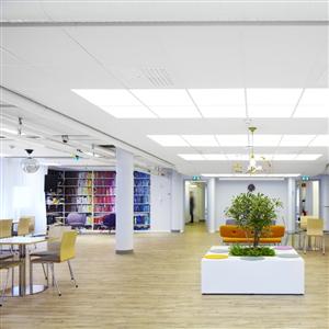 Taksystem ger naturligt ljud och ljus på kontoret