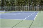 Bergo ECO Tennis