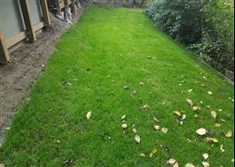 TURFquick gräsmatta
