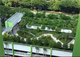 Takträdgård