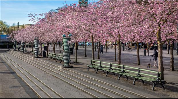 Kungsträdsgårdens bänkar åter i Nolas sortiment
