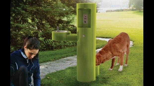 Dricksfontäner för både hundar och deras människor