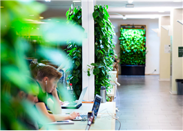 Fjärrstyrda växtväggar som renar luften på kontor