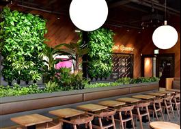 Naava växtväggar, Baskin Robbins, Seul, Sydkorea