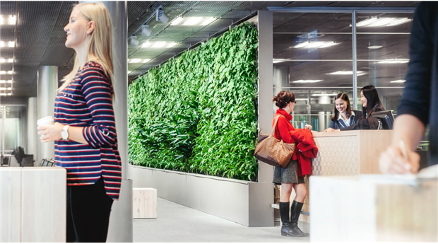 Naava smarta växtväggar renar luften på Helsingfors flygplats