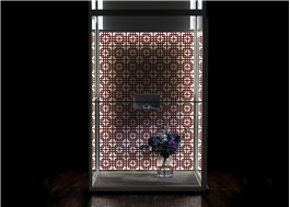 Enkelt att installera hiss hemma