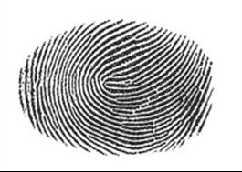 Öppna dörren med ditt fingeravtryck