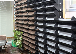 BGreen Living Wall-IT fylls med specialblandad jord